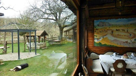 Il Vecchio Granaio: Vista esterna dalla vetrata della sala pranzo