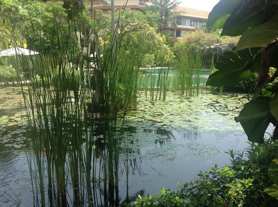 The Westin Resort Nusa Dua, Bali: Grounds