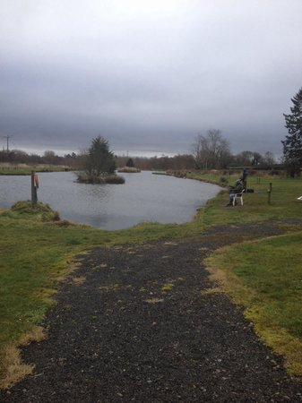 Brookhall Cottages: Fishing area