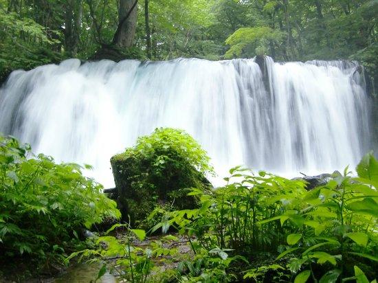 Oirase Stream: 銚子大滝