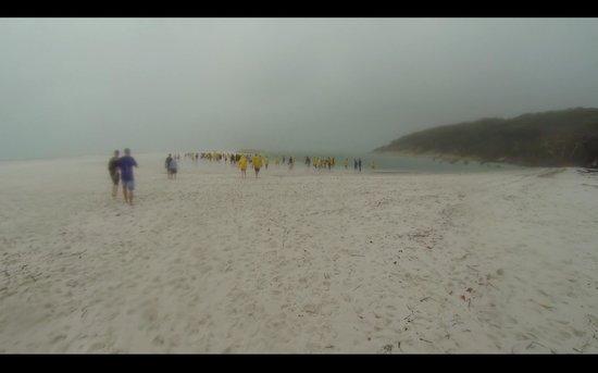 Ocean Rafting : Whitehaven Beach