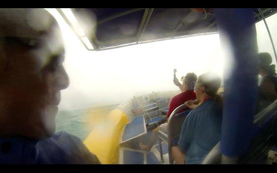 Ocean Rafting : strong rain and wind on Ocean Raft