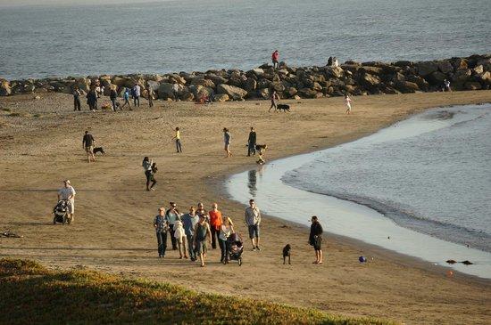 Sam's Chowder House: Beach life