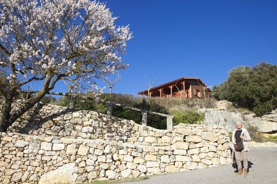 Serra de Prades Camping - Bungalow Park : Bungalows en Camping Serra de Prades