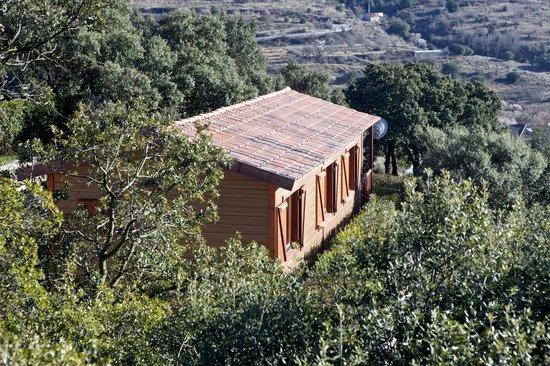Serra de Prades Camping - Bungalow Park : Entorno natural del Camping