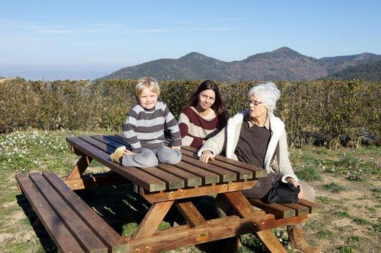 Serra de Prades Camping - Bungalow Park : Vistas