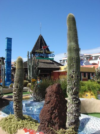 Minigolf Parque Santiago: Vista