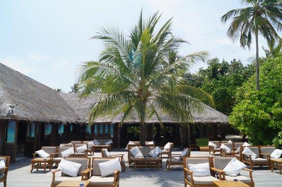 Meeru Island Resort & Spa: bar