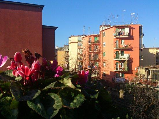 Hotel Villa Medici : Вид из окна