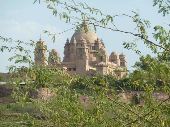 Umaid Bhawan Palace Jodhpur : The drive way view