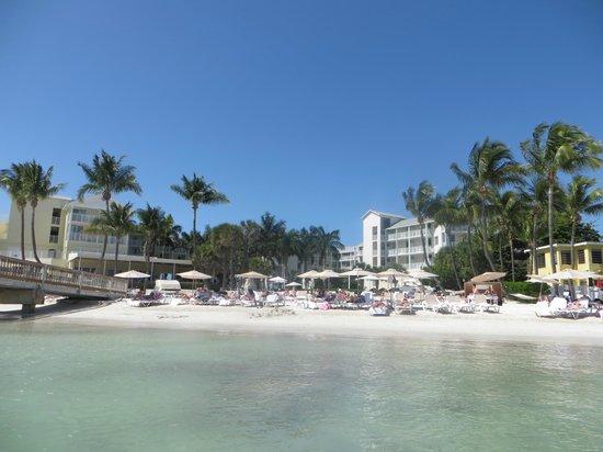 The Reach, A Waldorf Astoria Resort : Beach view from in the ocean