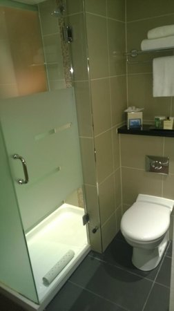 Hilton Birmingham Metropole Hotel: open toilet and shower