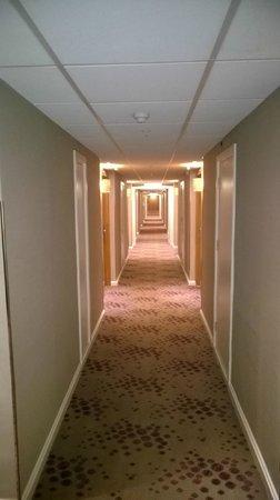 Hilton Birmingham Metropole Hotel: never ending long corridors