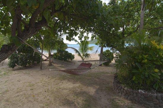 Navutu Stars Fiji Hotel & Resort: Private garden