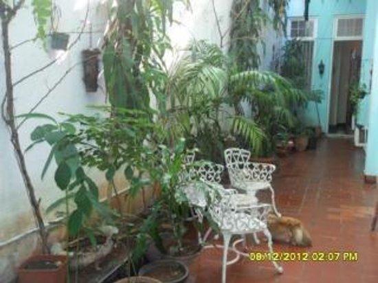 Casa de Jesus Deiro Rana : Le patio