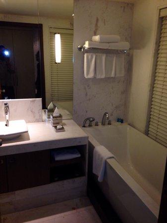Radisson Blu Agra Taj East Gate: Bath room