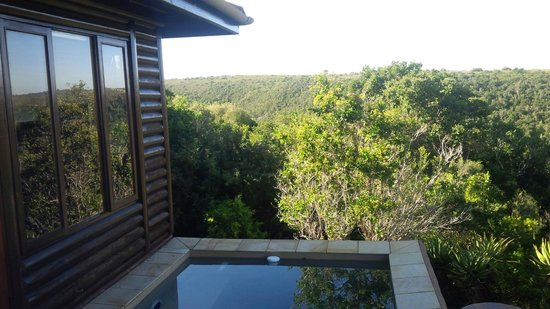 Kariega Ukhozi Lodge : Viewn from the plunge pool in room 5