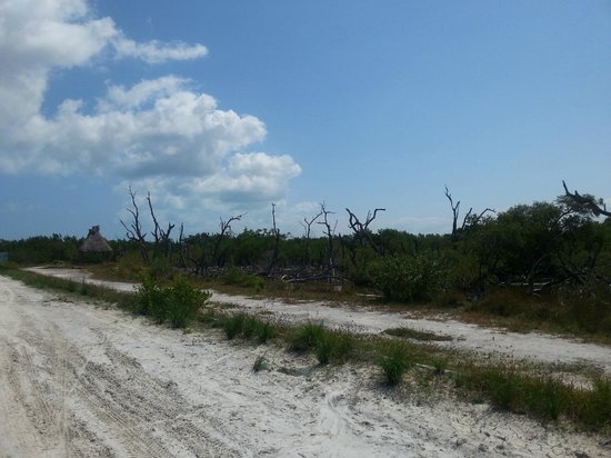 Las Nubes De Holbox: Strand