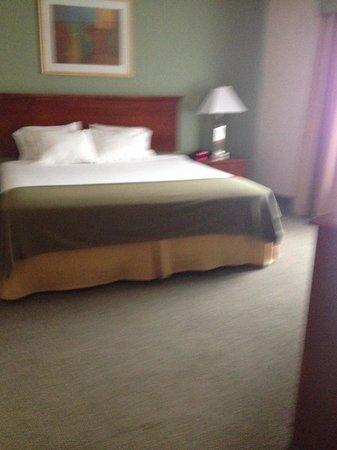 Holiday Inn Express Orange : Large king suite