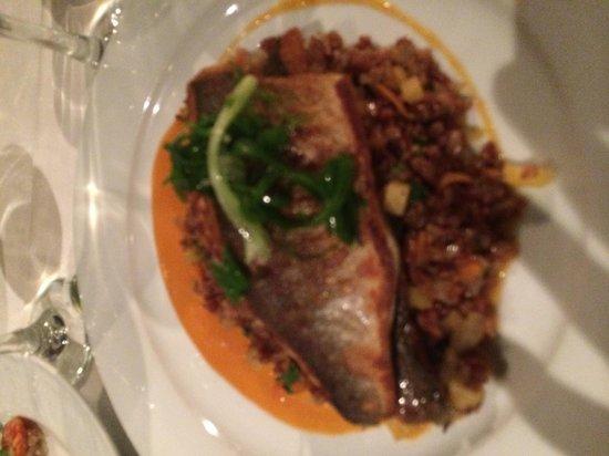Manta Ray: Dinner!