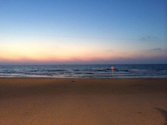 Manta Ray: Sunset dinner