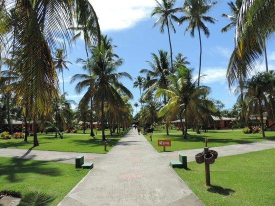 Patachocas: Área de acesso aos Bangalôs