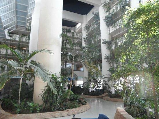 Melia Benidorm: Inside hotel