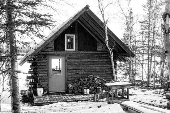 EarthSong Lodge - Denali's Natural Retreat : Lodging one night,