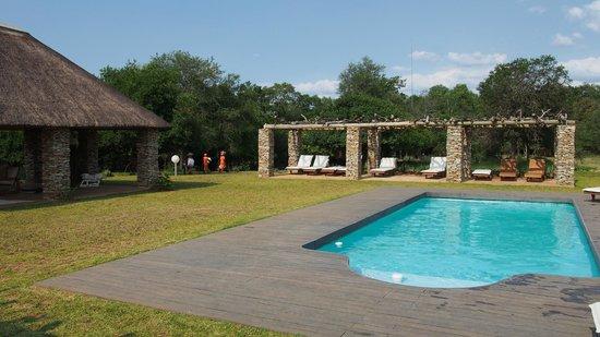 Karongwe River Lodge: pool