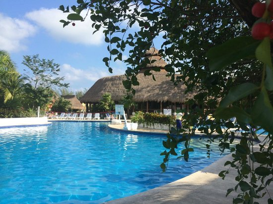 Iberostar Cozumel : pool