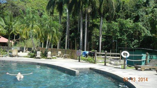 YS Falls: Beautiful pool warmed by the sun