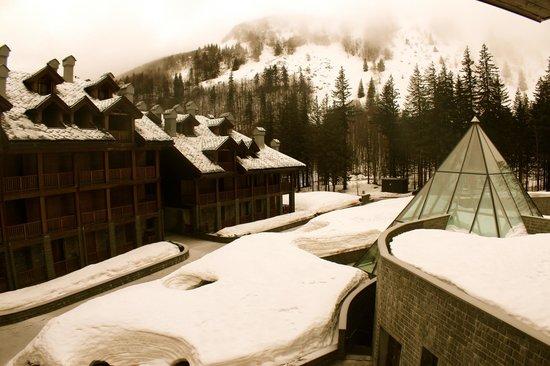 Val di Luce Spa Resort: vista dalla nostra finestra