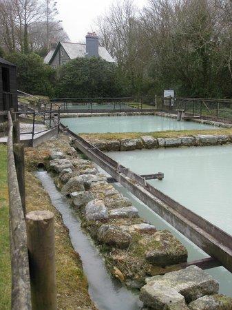 Wheal Martyn : Slurry Pits