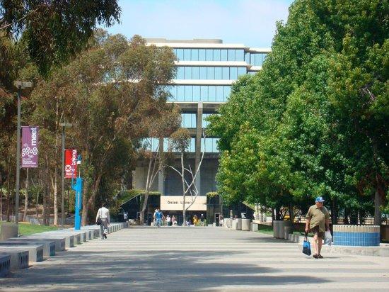 University of California San Diego: Caminho até a biblioteca
