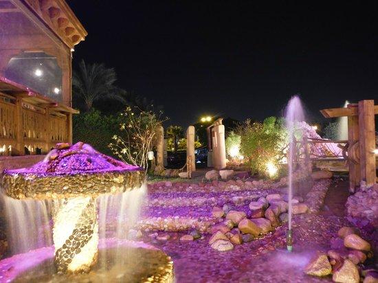 Hilton Sharm Dreams Resort : Outside Bar Area
