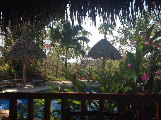 Lodge Las Ranas : View breakfast