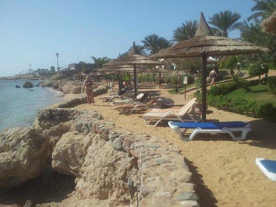 Royal Grand Sharm Hotel: la spiaggia è meravigliosa