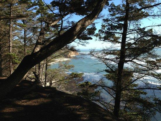Seal Cove Inn : Five minutes away, beautiful views