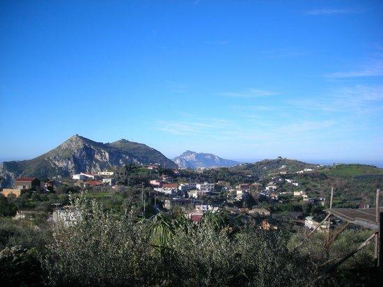 Relais Villa Caprile: Capri dal terrazzo