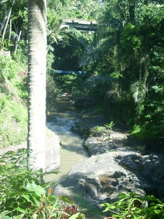 Bali Spirit Hotel and Spa: River