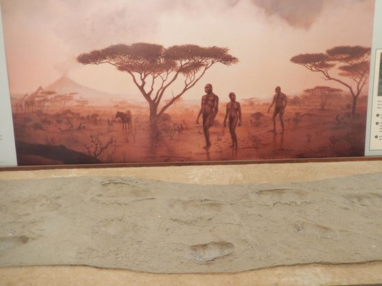 Serengeti Serena Safari Lodge: Repoduction Foot Prints, Painting of Early Humans
