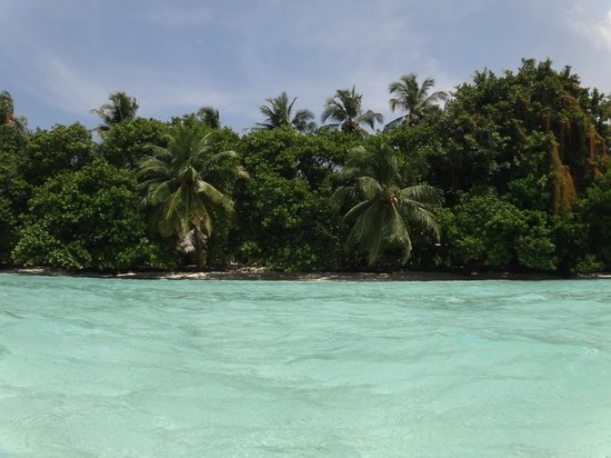 Kuramathi Island Resort: plage du kuramathi
