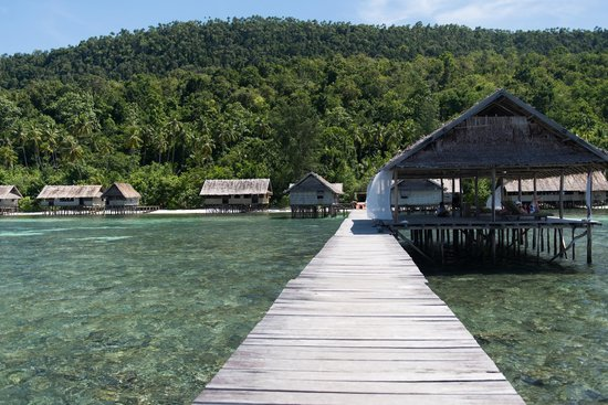 Kri Eco Resort : From the jetty