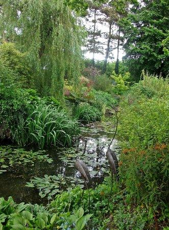 Goltho Gardens August 2013