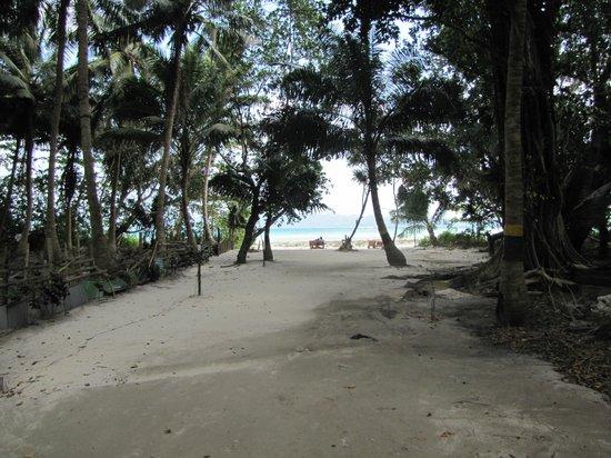 Gold Star Beach Resort: View from resort..