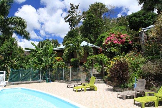 Villa Rose Caraibes : Piscine et Bungalow Cisia
