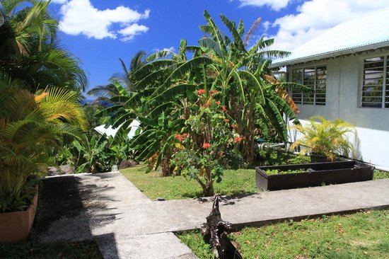 Villa Rose Caraibes : Vue de la chambre Chocolat sur l'accueil de la maison