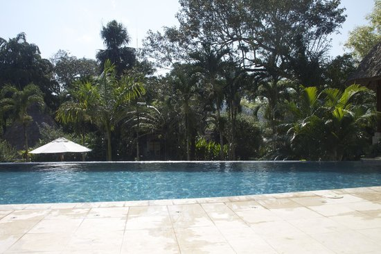 The Lodge at Chaa Creek : Infinity Pool