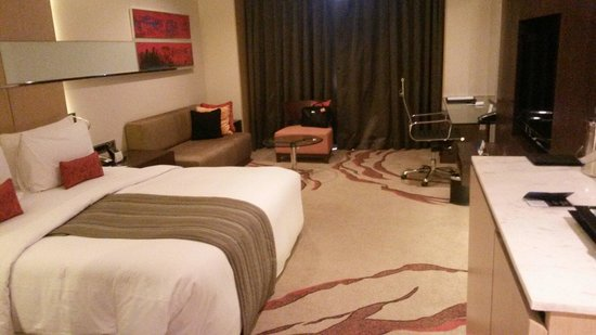 Radisson Blu Hotel Amritsar: The room