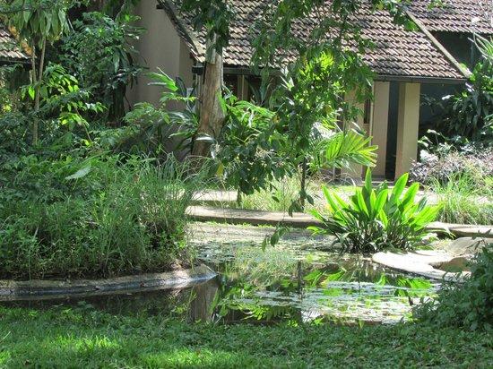Sigiriya Village Hotel : Tranquil setting of our room
